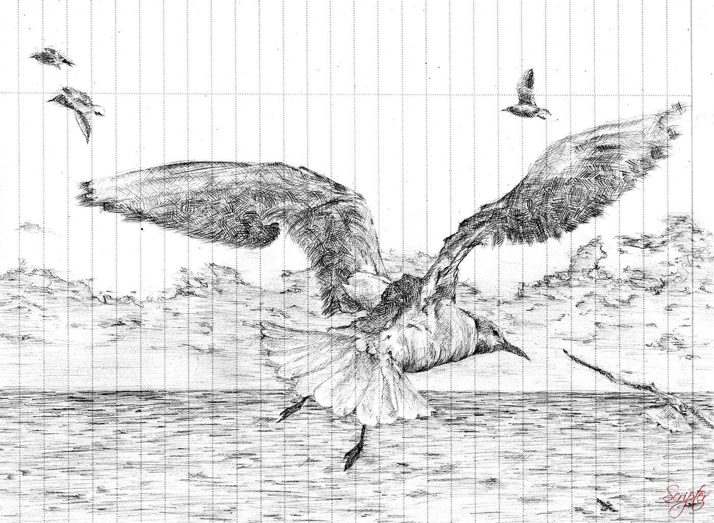 draw_001.jpg