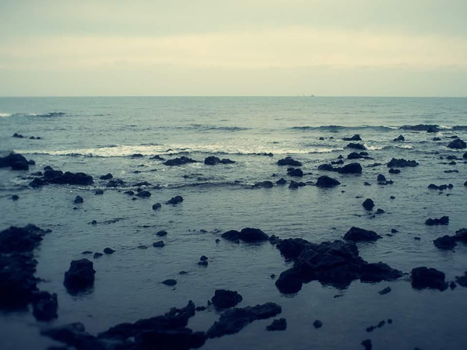 검은돌의 바다