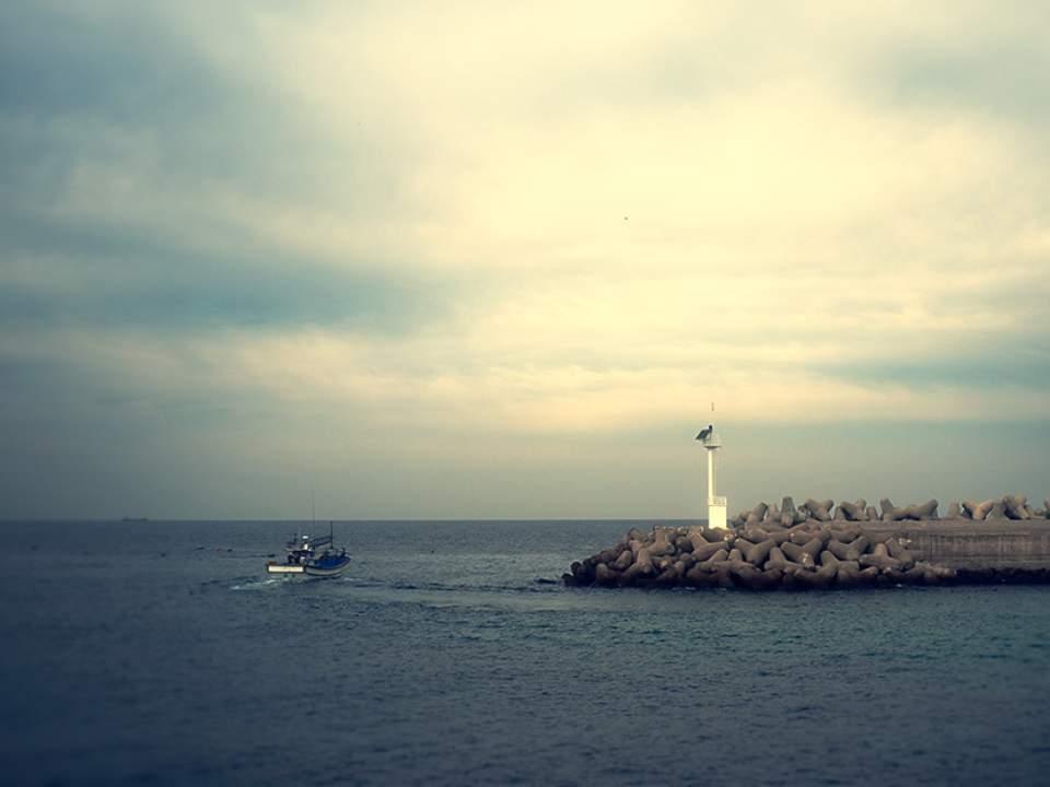 바다의 일부분