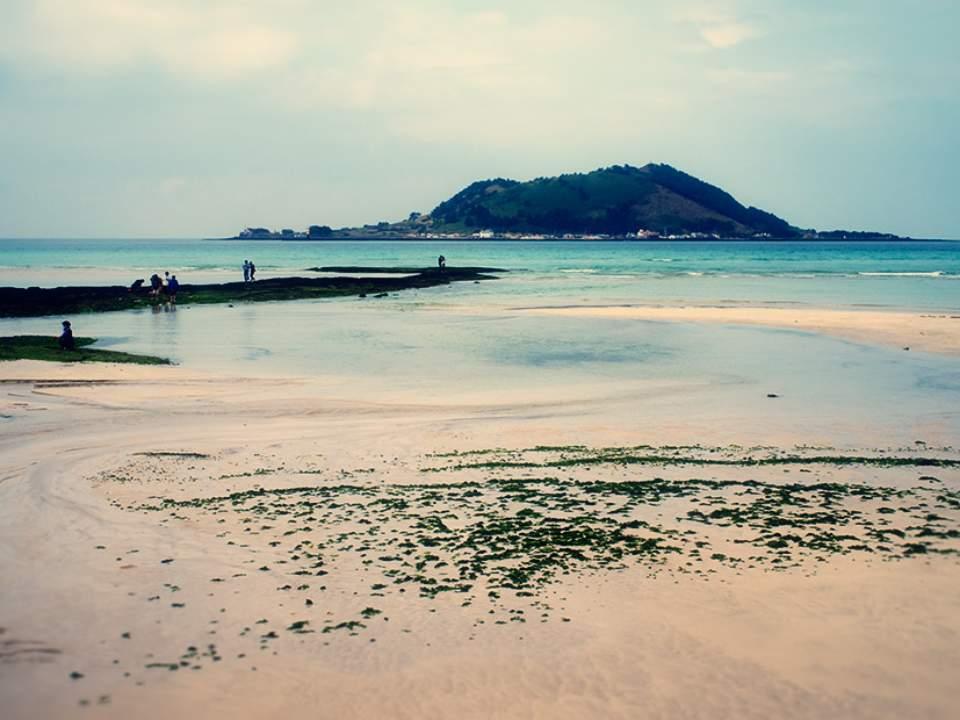 멋진 해변가