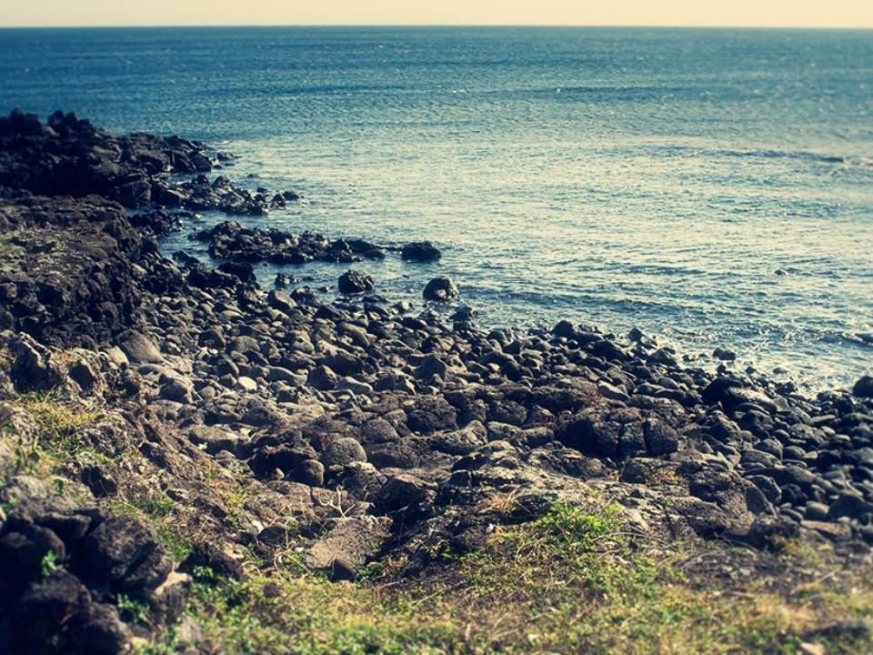 바다의 한부분