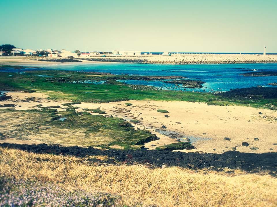 바다앞의 풍경