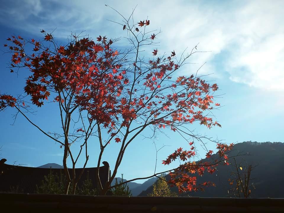 가을 하늘은..