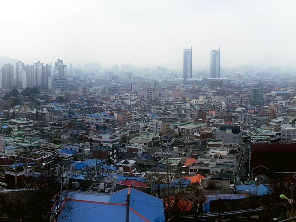 대전의 일부분