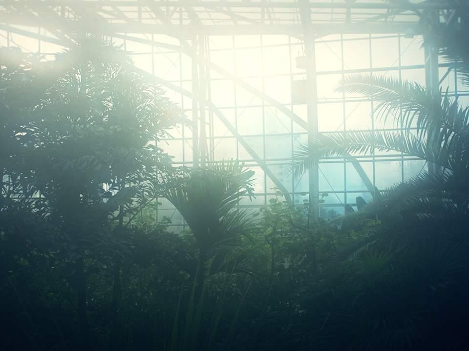 식물원 속에서..