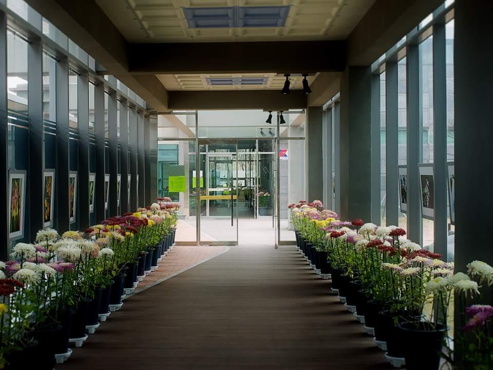 식물원의 복도