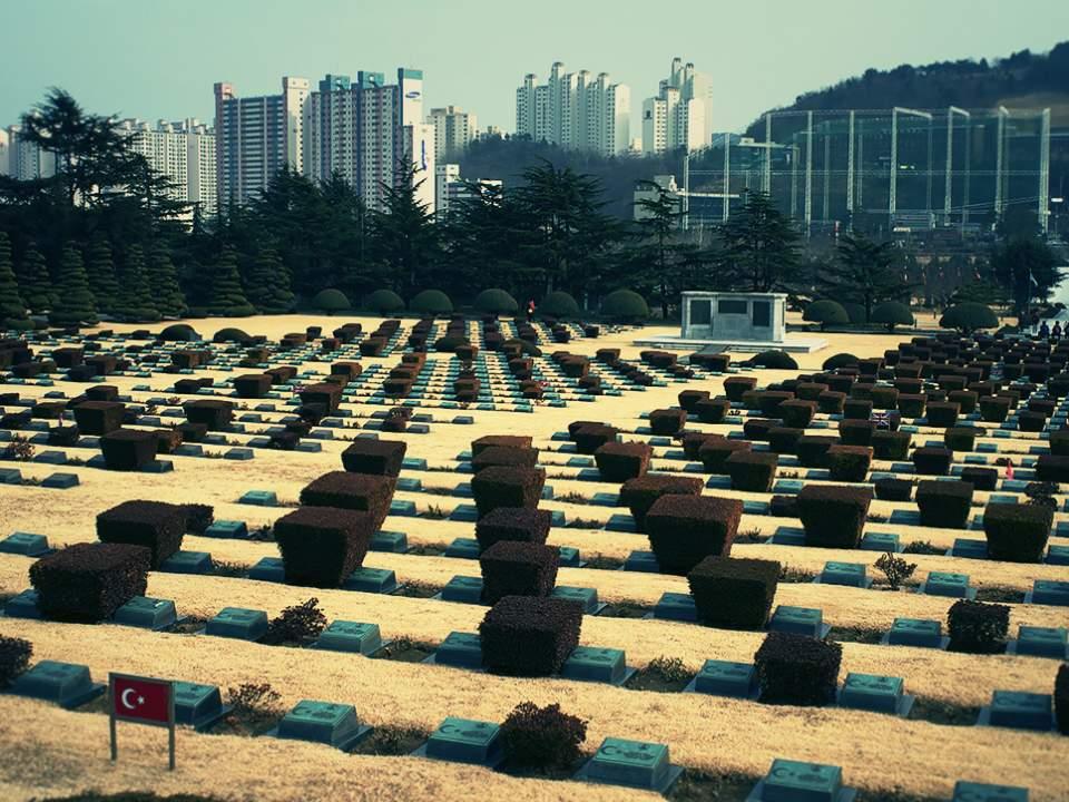 UN 공원의 일부분의 모습