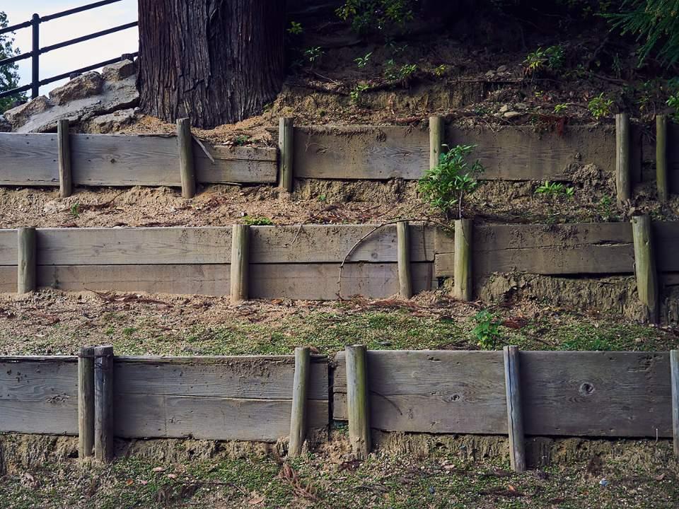 벽의 모습