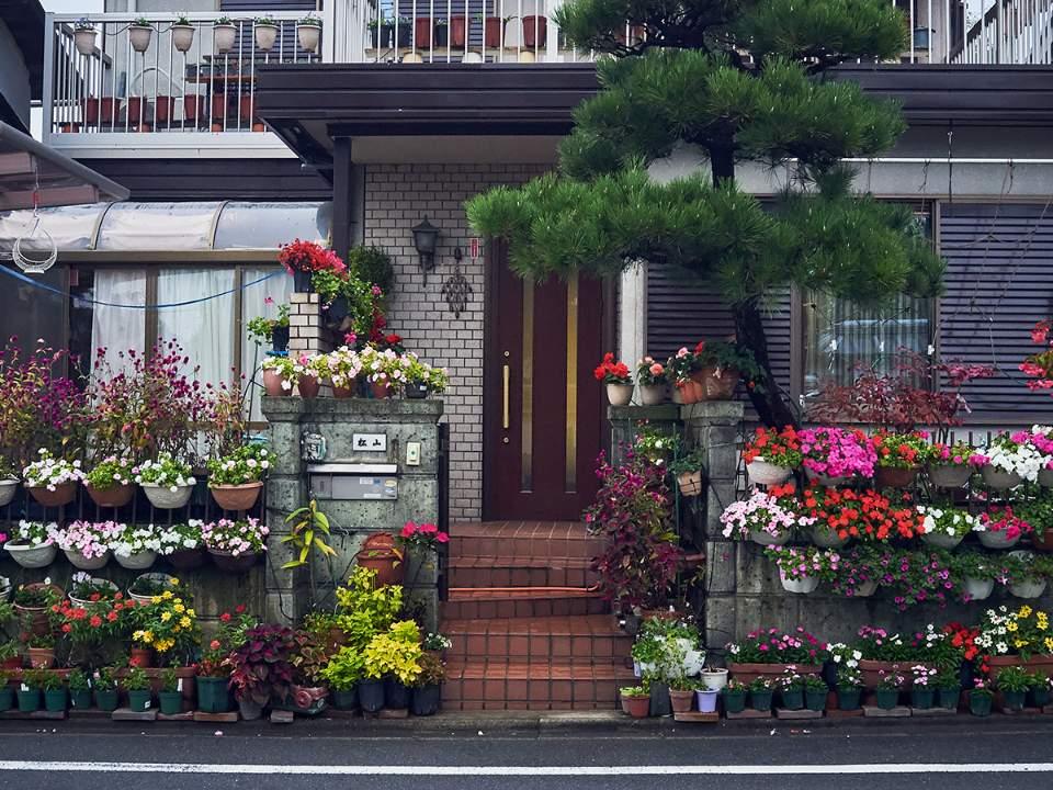 작은 동네의 거리