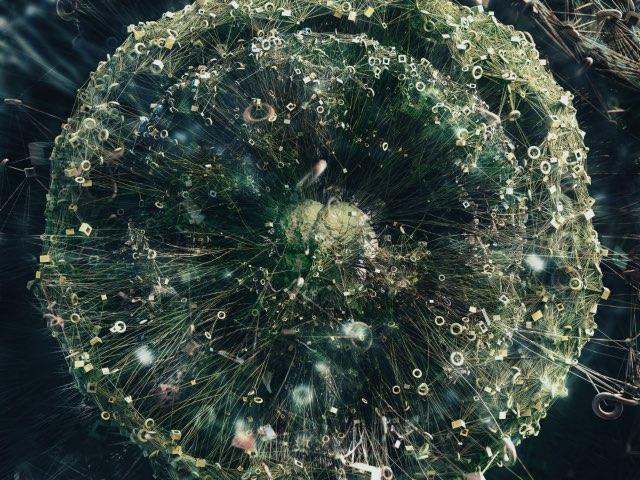 민들레 씨 (Dandelion Seeds)