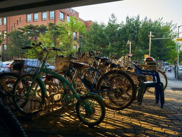 자전거들의 그림자