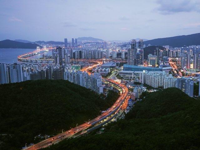 장산에서 본 부산의 한 모습