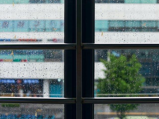 비오는날, 창밖