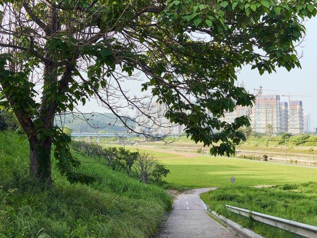 넓은 한강공원