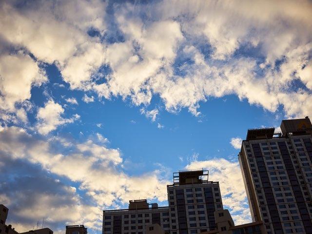 도시속의 푸른하늘