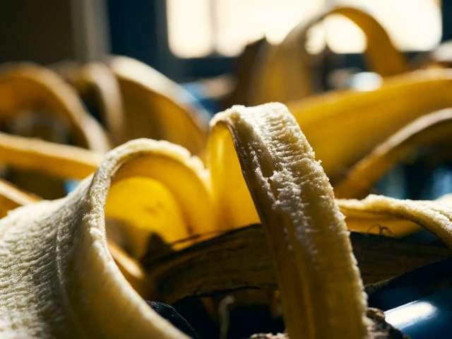 바나나 더미