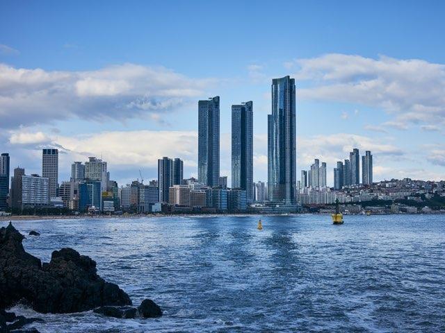 바다와 도시